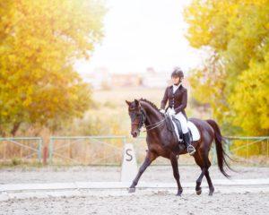 Cavalière et cheval de sport