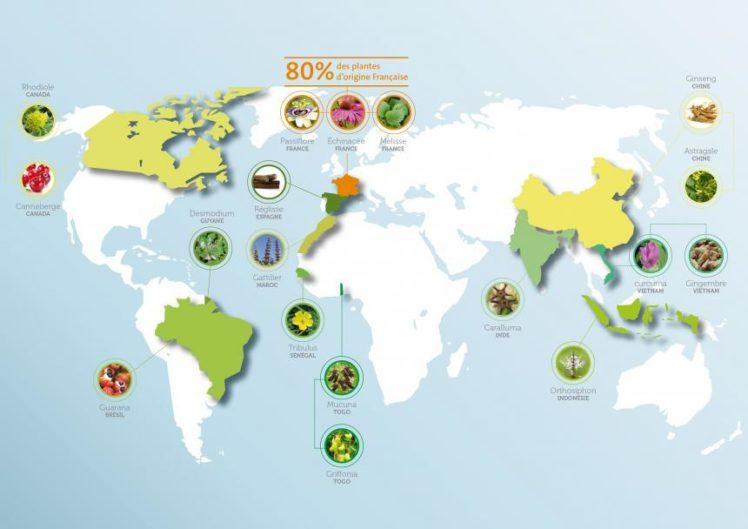 Carte du sourcing des plantes EPS Wamine