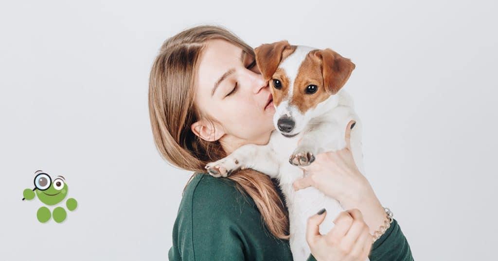 petit chien et câlin