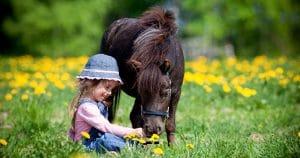petite fille assise dans l'herbe avec un cheval