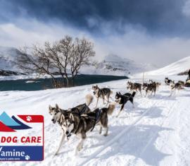 Wamine partenaire de la Grande Odyssée Savoie Mont Blanc